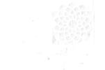 انستیتو تحقیقات تغذیه ای و صنایع غذایی کشور