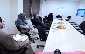 جلسه دفاع آنلاین فتانه هاشم پور برگزار شد