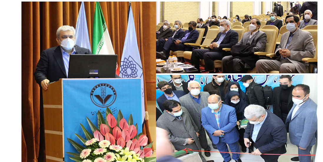 In the presence of the Vice President for Science and Technology; Phase 3 of the Growth and Innovation Center of the Nutrition Research and Food Industry Institute was inaugurated